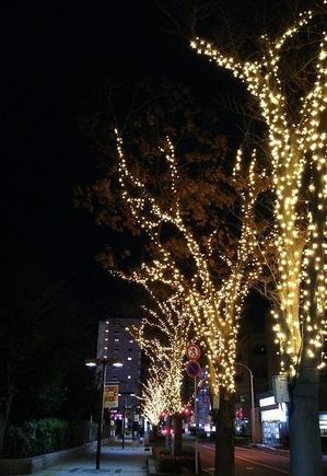 市川市大和田周辺のライトアップ2016