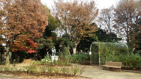 千葉県市川市須和田公園のバラ園