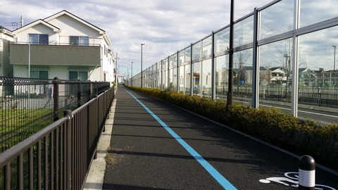 浦安鎌ケ谷線の歩道