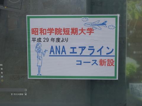 昭和学院短期大学ANAエアラインコース開設