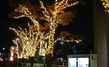 市川文化会館前のライトアップ