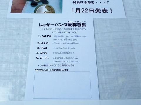 image5_投票用紙