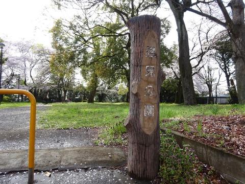 里見公園分園 (2)