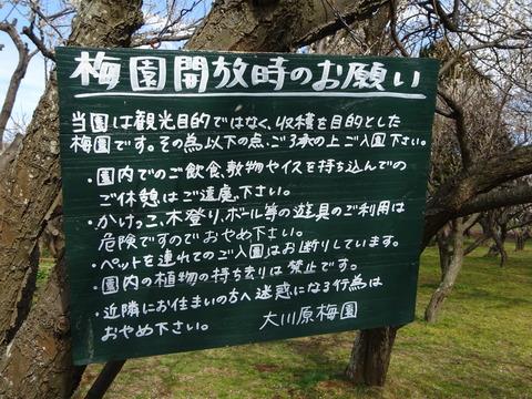大川原梅園の注意事項