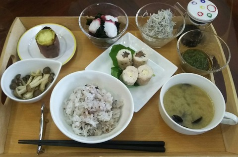 ドッグカフェNANAちゃん家の健康食ランチ