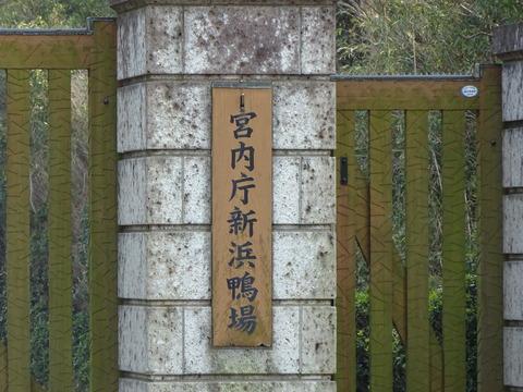 宮内庁新浜鴨場