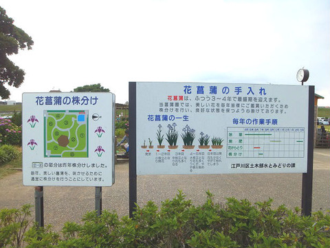 image5_豆知識1