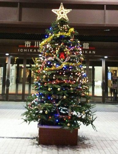 市川文化会館のクリスマスツリー2016