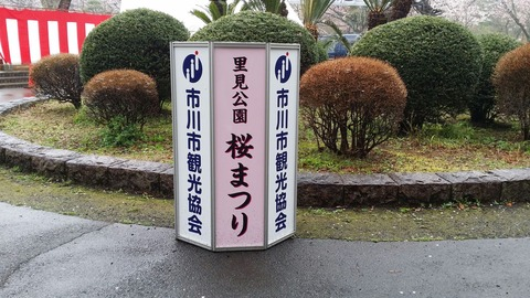 里見公園・桜まつり2016