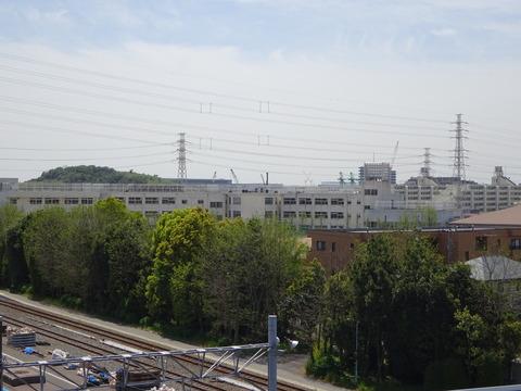 妙典橋から見た妙典中学校