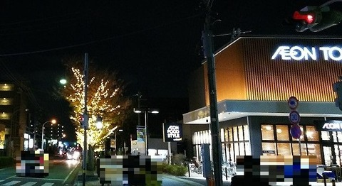 イオンタウン市川大和田前のライトアップ