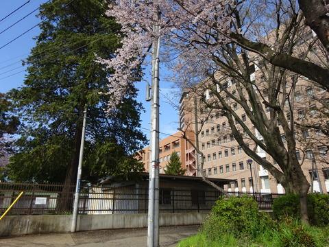 筑波大学付属聴覚特別支援学校
