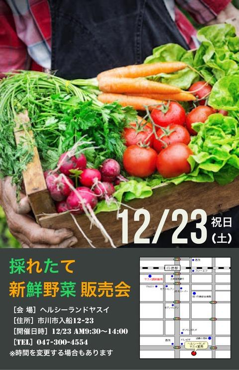 ヘルシーランドヤスイ新鮮野菜販売会2017