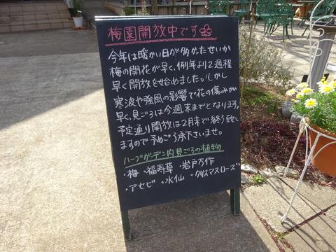 2017年大川原梅園開放